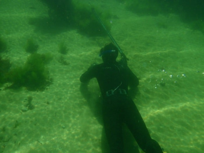 Spear fishing at Point Peron