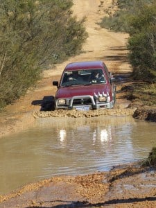 Crossing a puddle at Mundaring