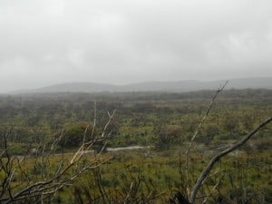 Raining at Peaceful Bay