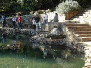 More water at Araluen