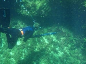 Spearfishing near Smiths Beach