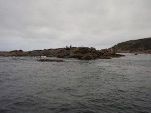 Seal Island is well worth a look