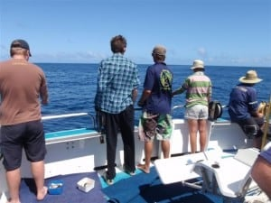 Fishing off the back of the Mahi Mahi II