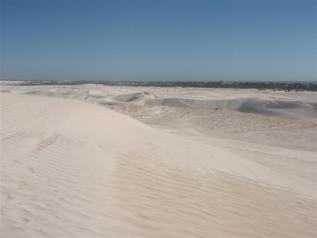 Enjoying the Lancelin Sand Dunes