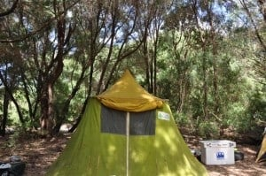 An old, Canvas Tent