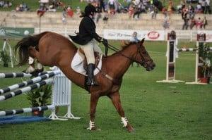 Jumping horses at the Royal Show