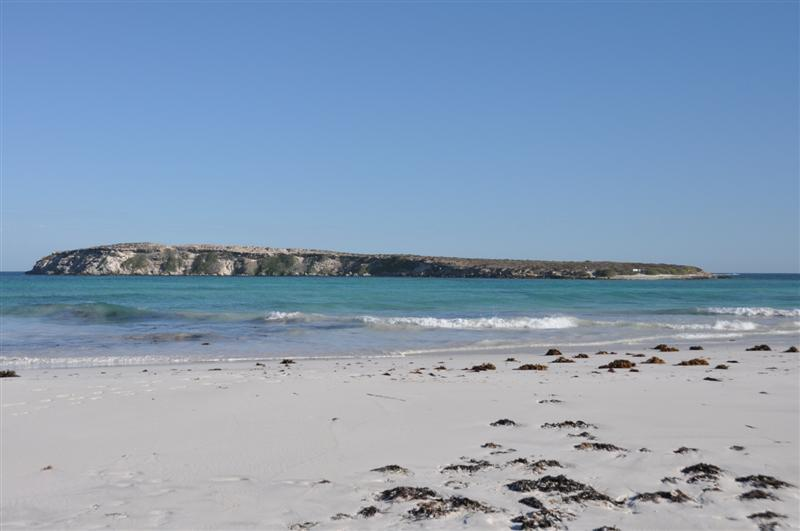 Wedge Island Near Lancelin