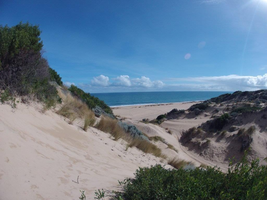 Belvidere dunes and beach