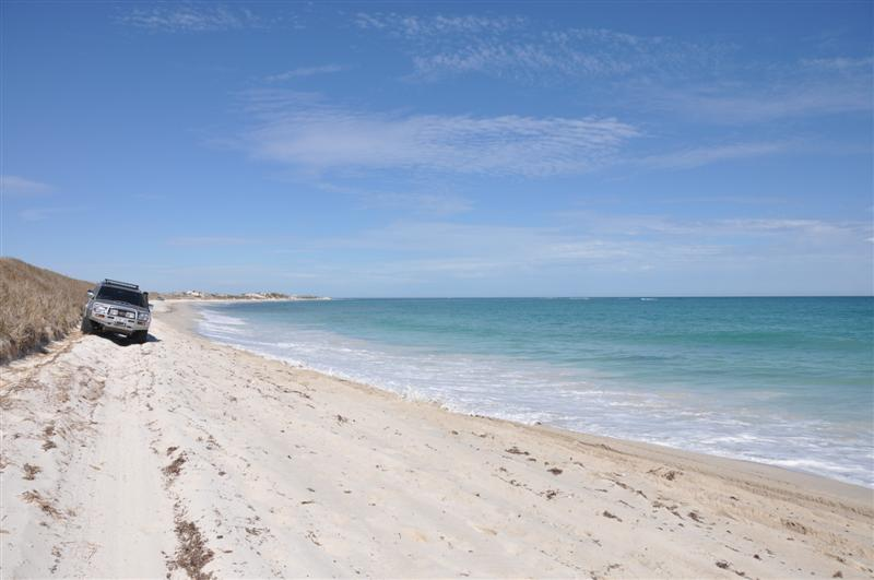 Driving Along The Beach At Lancelin