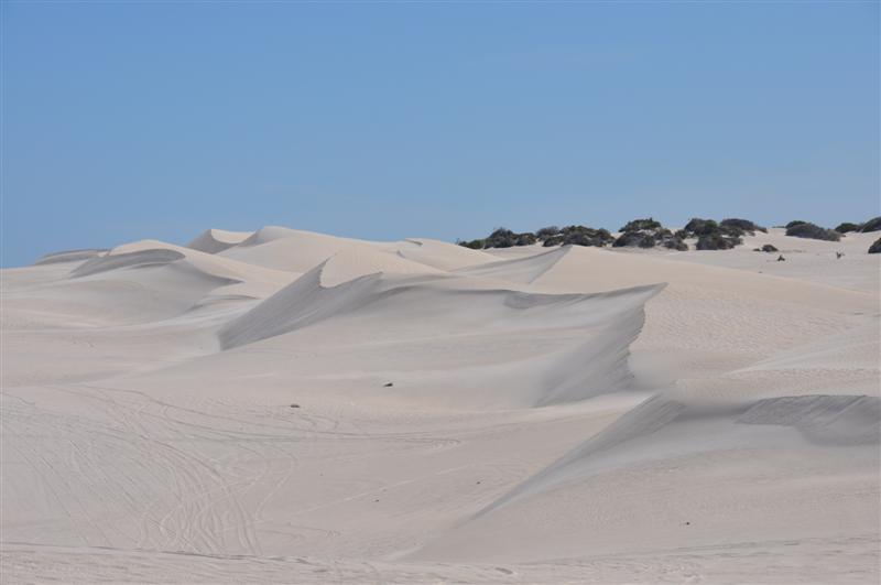 Dunes at Lancelin