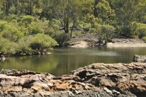 Dwellingup River