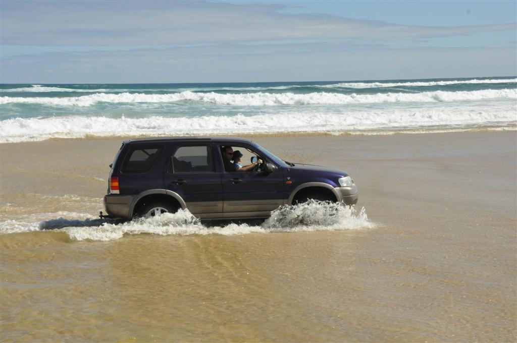 Ford Escape at Yeagarup