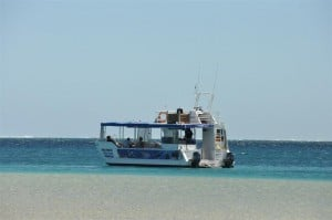 Coral Bay has an awesome coral viewing boat