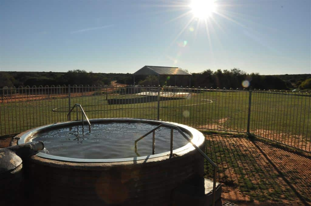 Hot pool at Shark Bay homestead