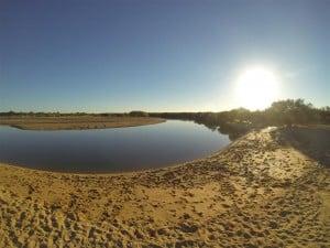 Wapet Creek, where the fish jump