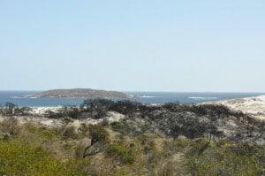 Cape Arid view