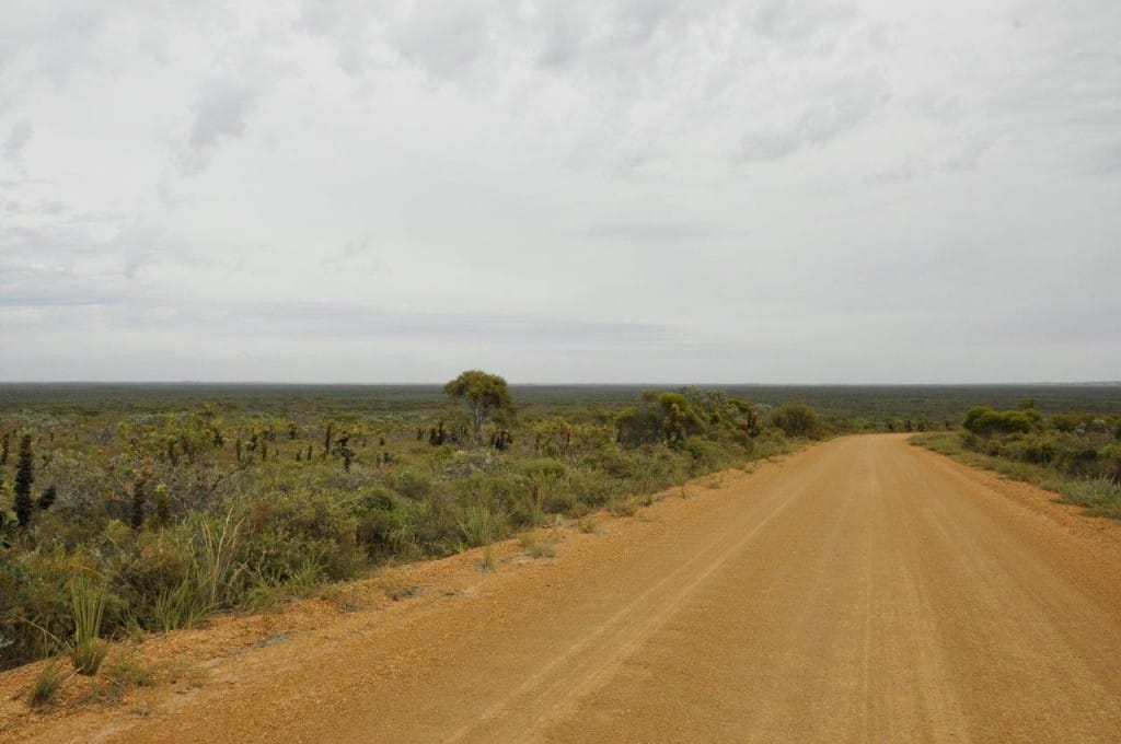 Fitzgerald National Park roads