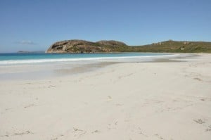 Lucky Bay in Esperance