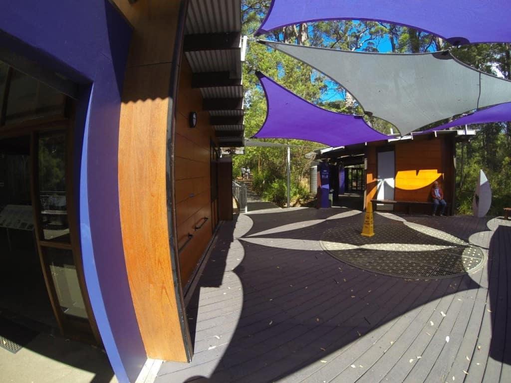 Tree Top walk entrance