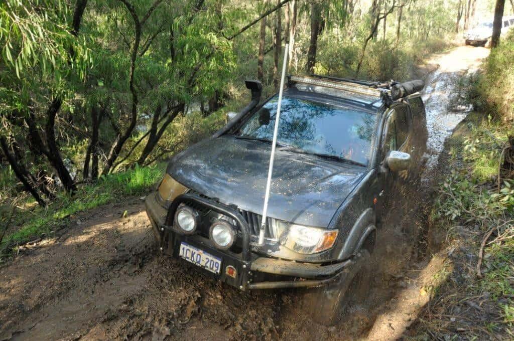 Triton in the mud