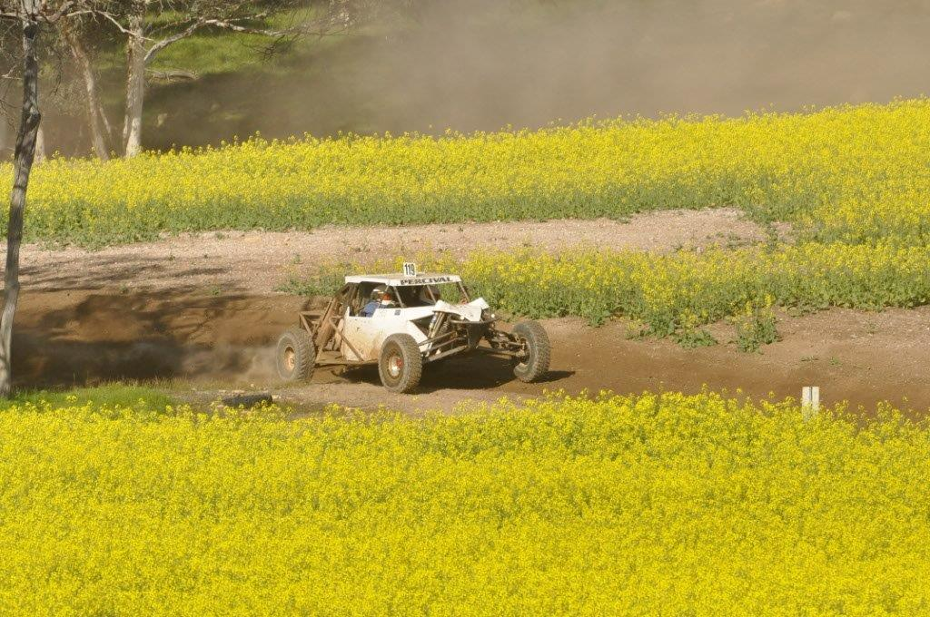 Racing through the Canola