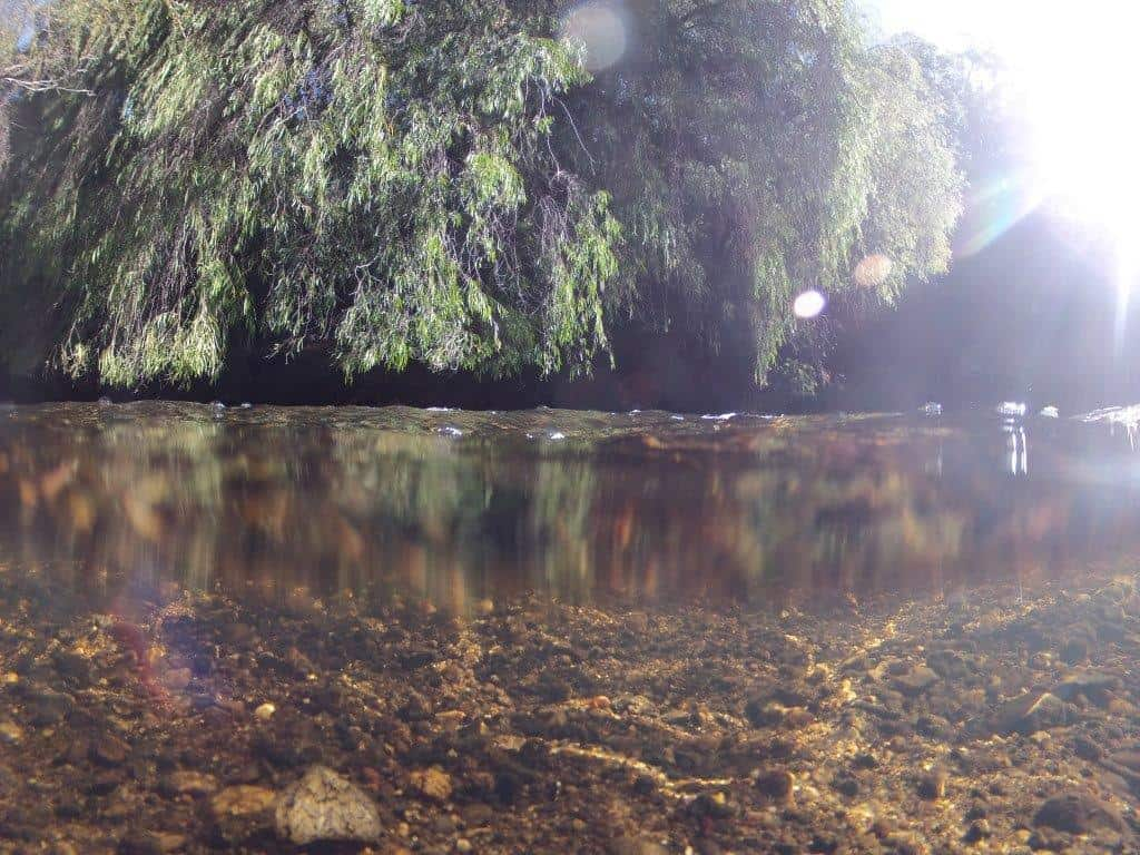 Collie river underwater