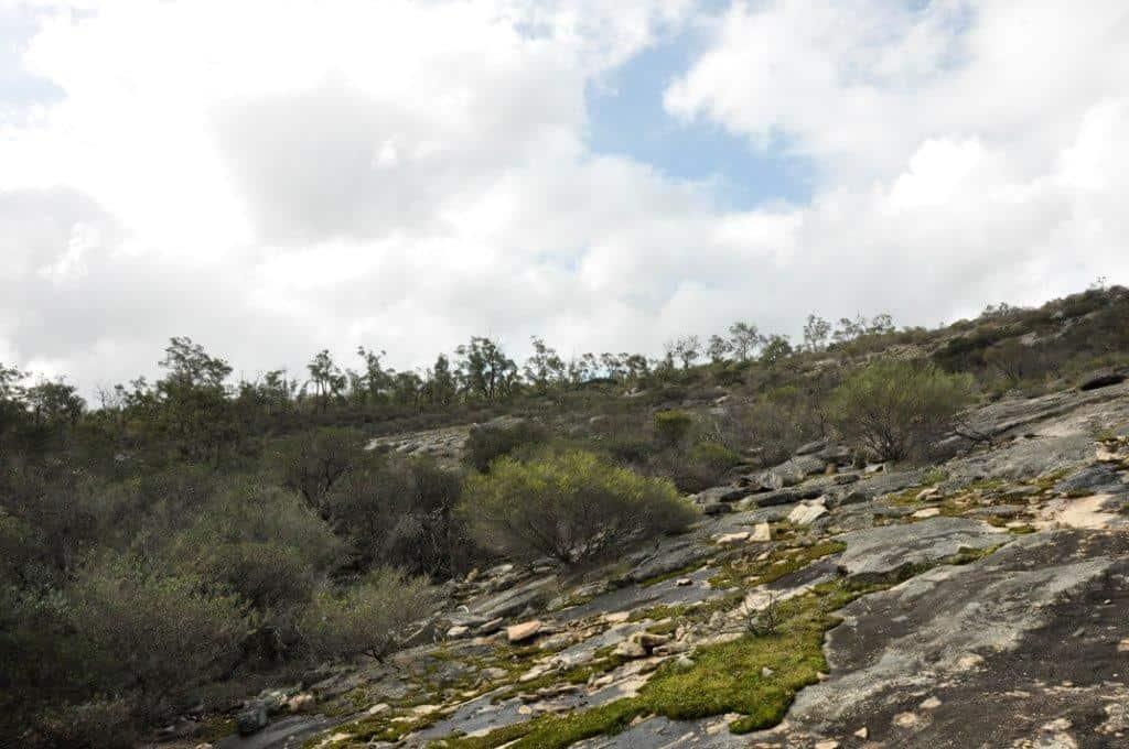 Jarrahdale rocks