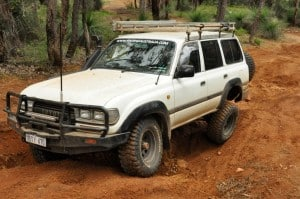 Loving the Landcruiser