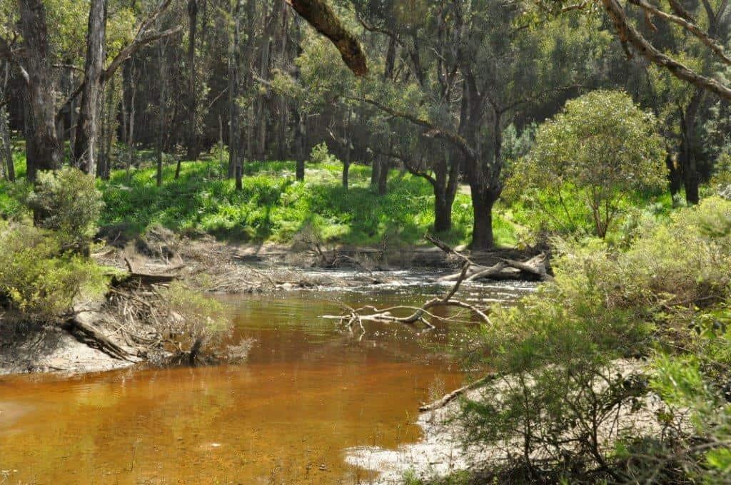 Nannup Blackwood River