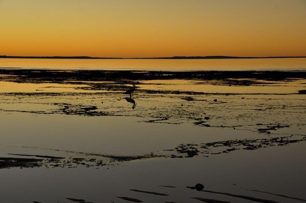 Cleaverville sunset