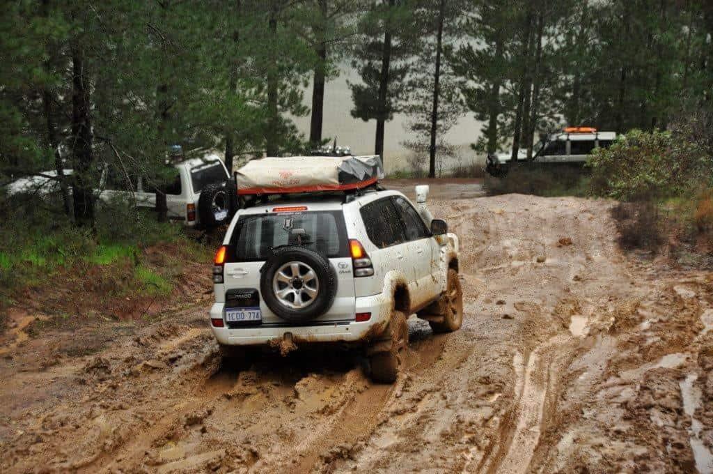 Prado in the mud