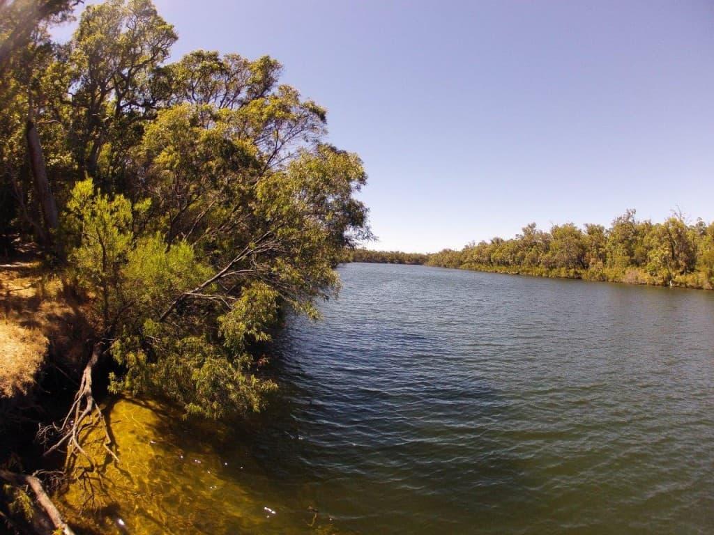 Blackwood River near Albany