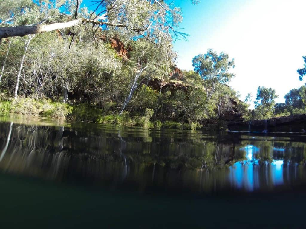 Swimming at Fern Pool