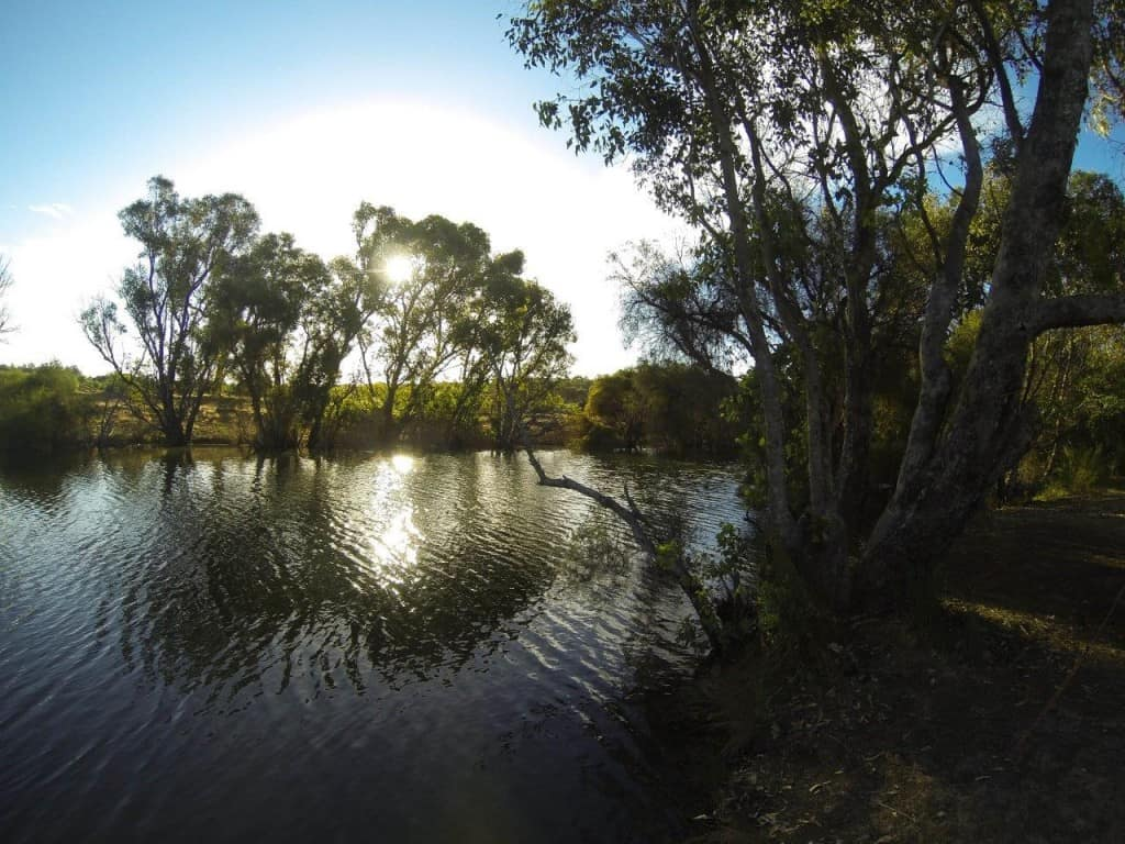Collie River camping