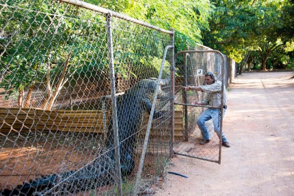 Crocodile Park Broome