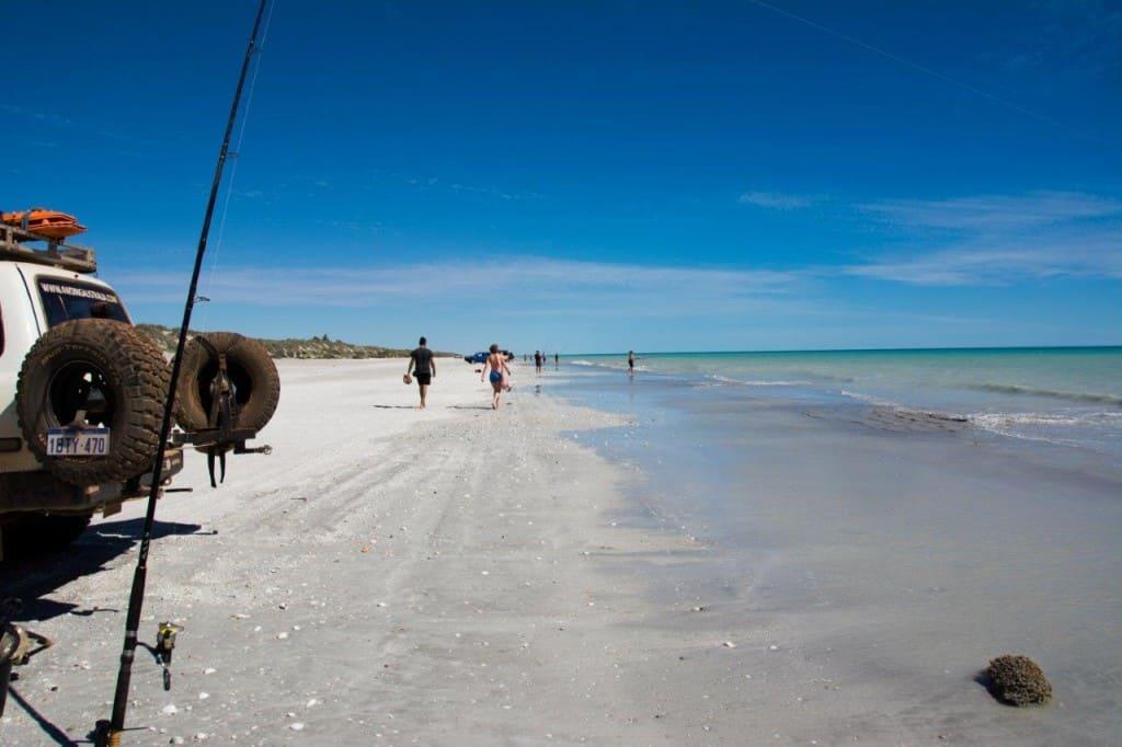 Fishing at 80 mile