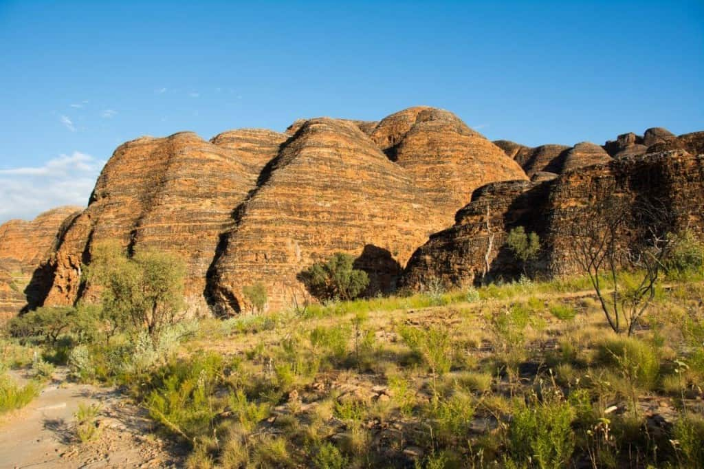 Loving the Bungle Bungles