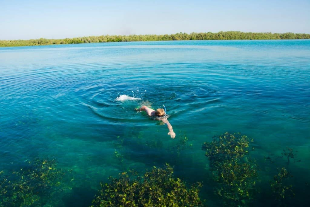 Snorkeling at Hunter Creek