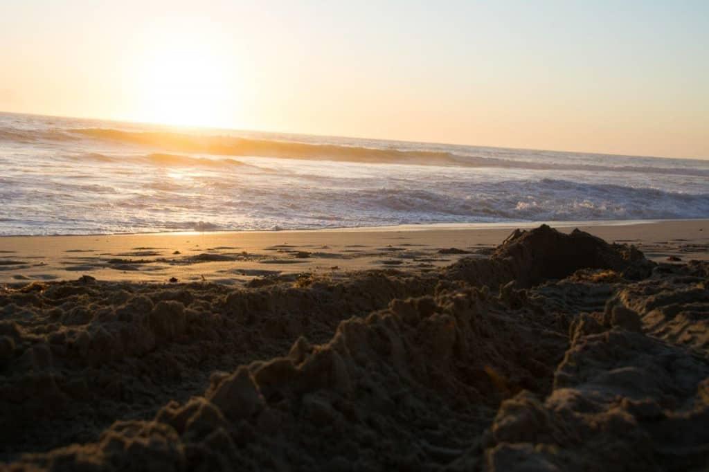 The dug up beach