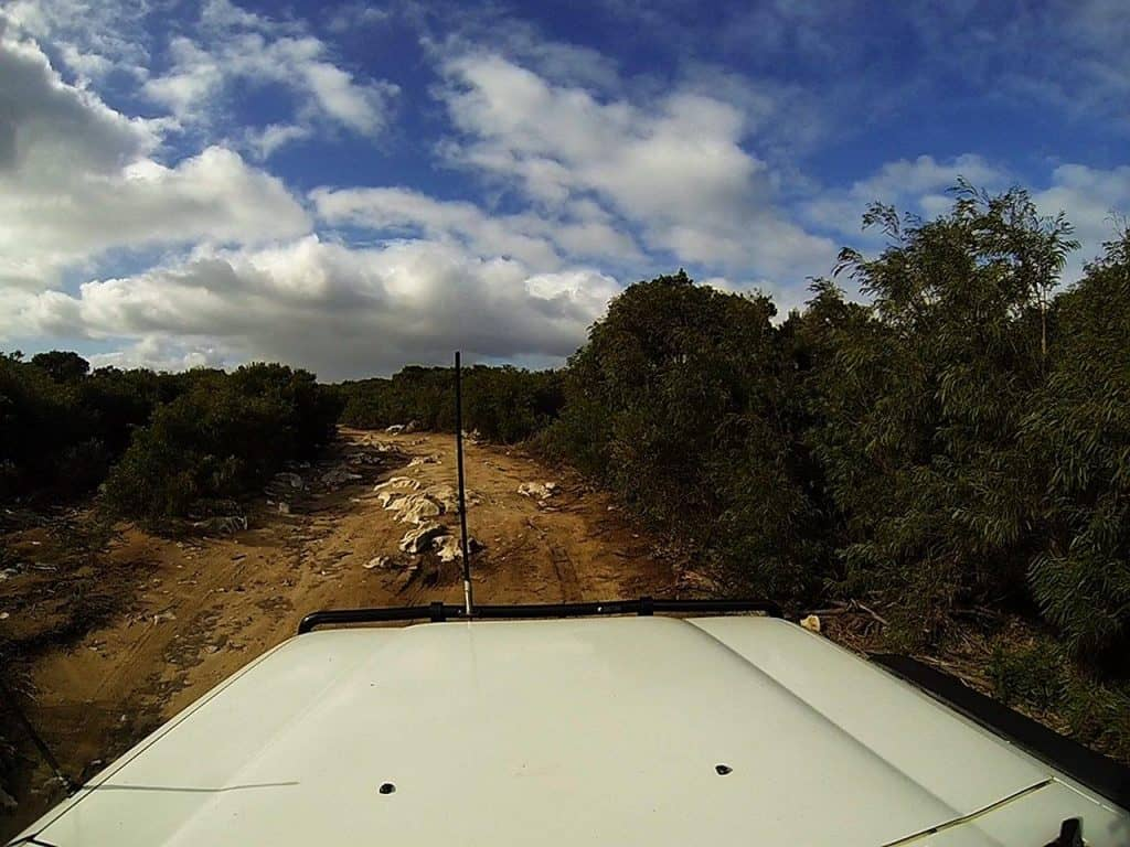 Point Road Limestone