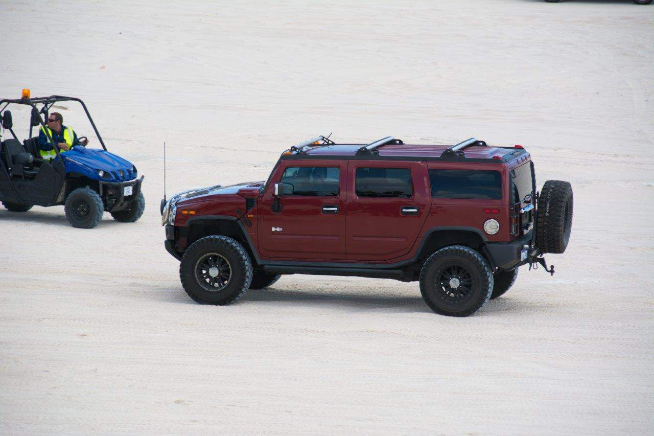 a-couple-of-hummers