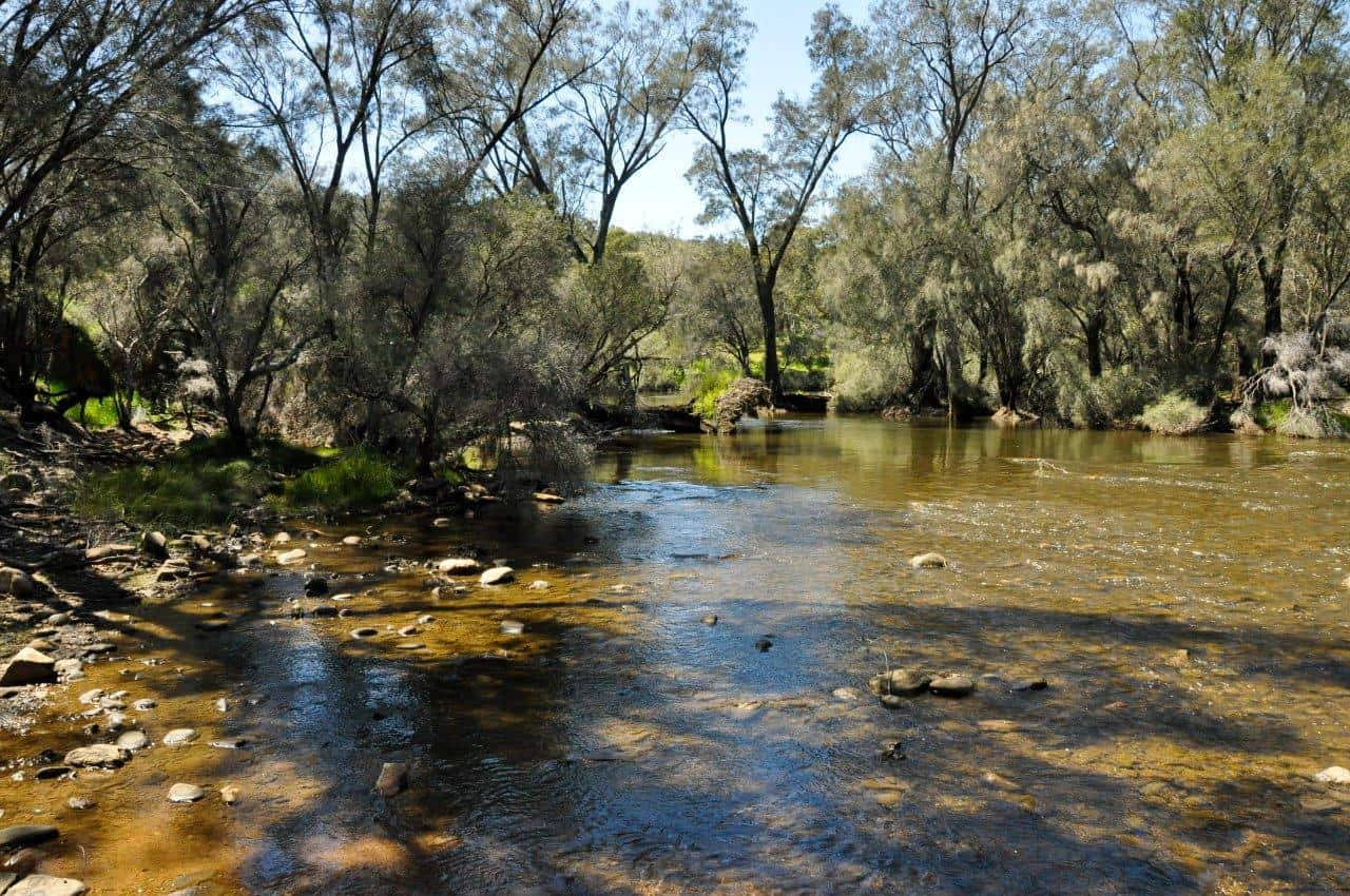 avon-river-at-walyunga