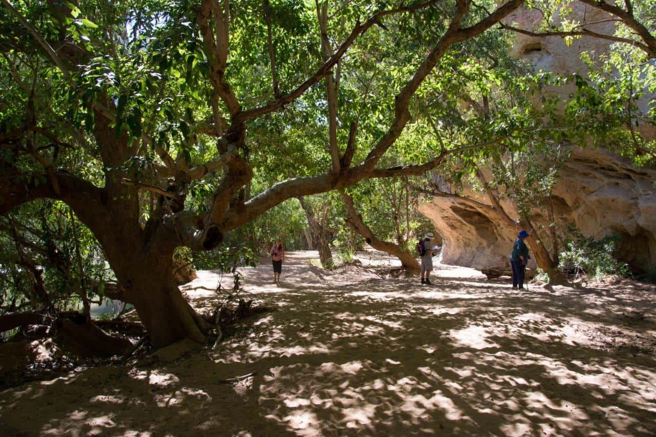 Windjana Gorge walk