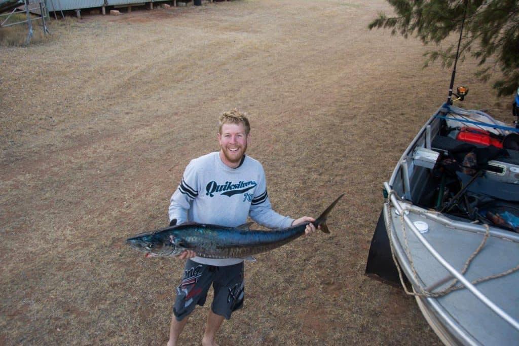 Mackerel at Port Gregory