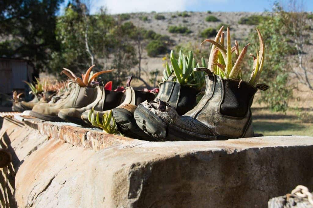 Boots at Linga Longa