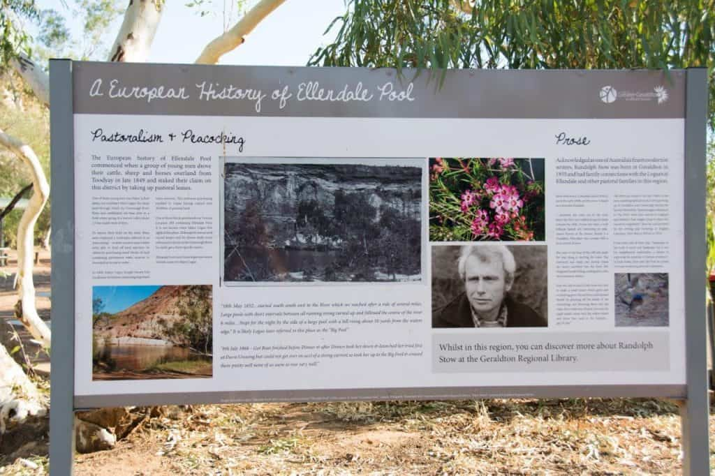 Ellendale Pool History