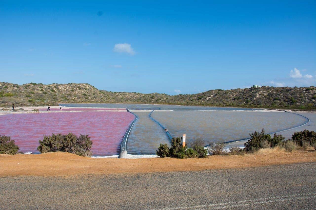 Port Gregory Pink Lake