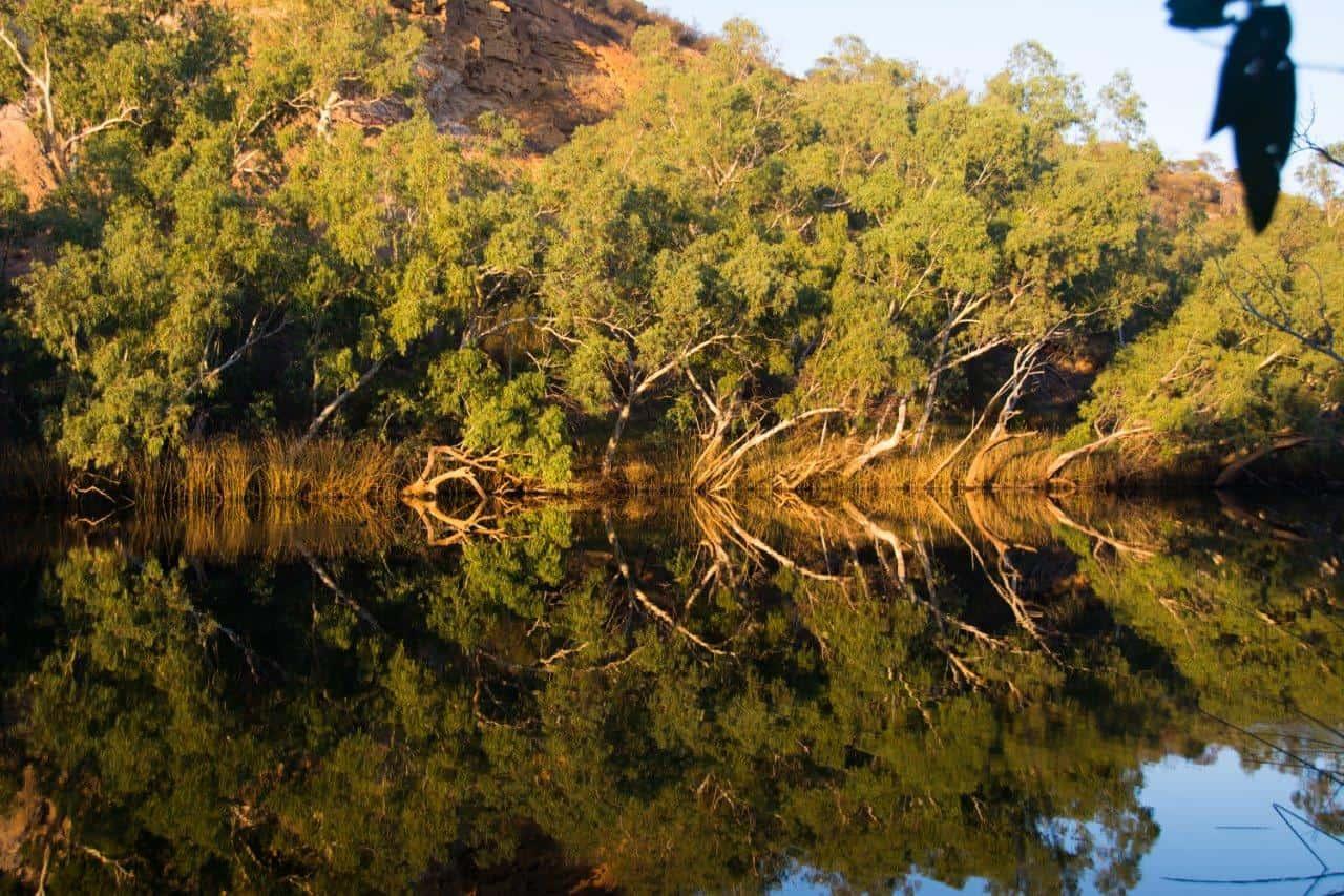Ellendale Pool reflections
