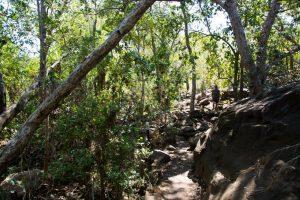 A big walk to the Mitchell Falls