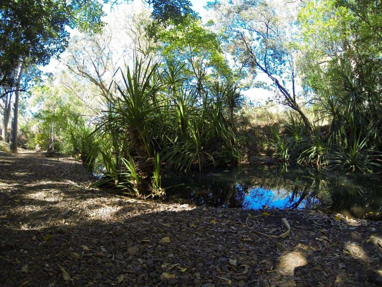 Annie Creek Mornington
